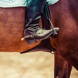 Smartphone Video Consultation: Horse and Rider