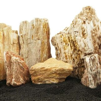 Burma Petrified Stone Mixed Freshwater Rocks - Medium Set - Lifegard Aquatics