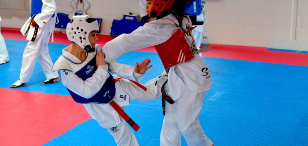 World Class II Sparring