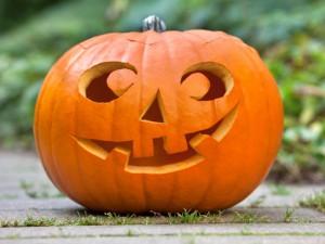 PumpkinNormalLounge