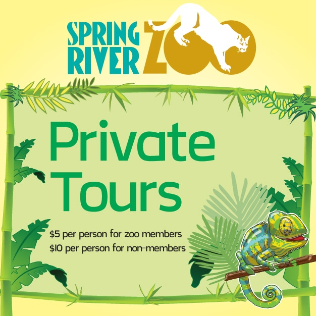 Spring River Zoo Private Tours