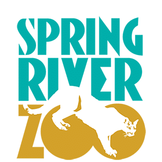 Spring River Zoo logo with Mountain Lion