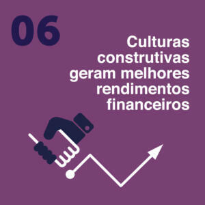 White Paper - Portugués-6