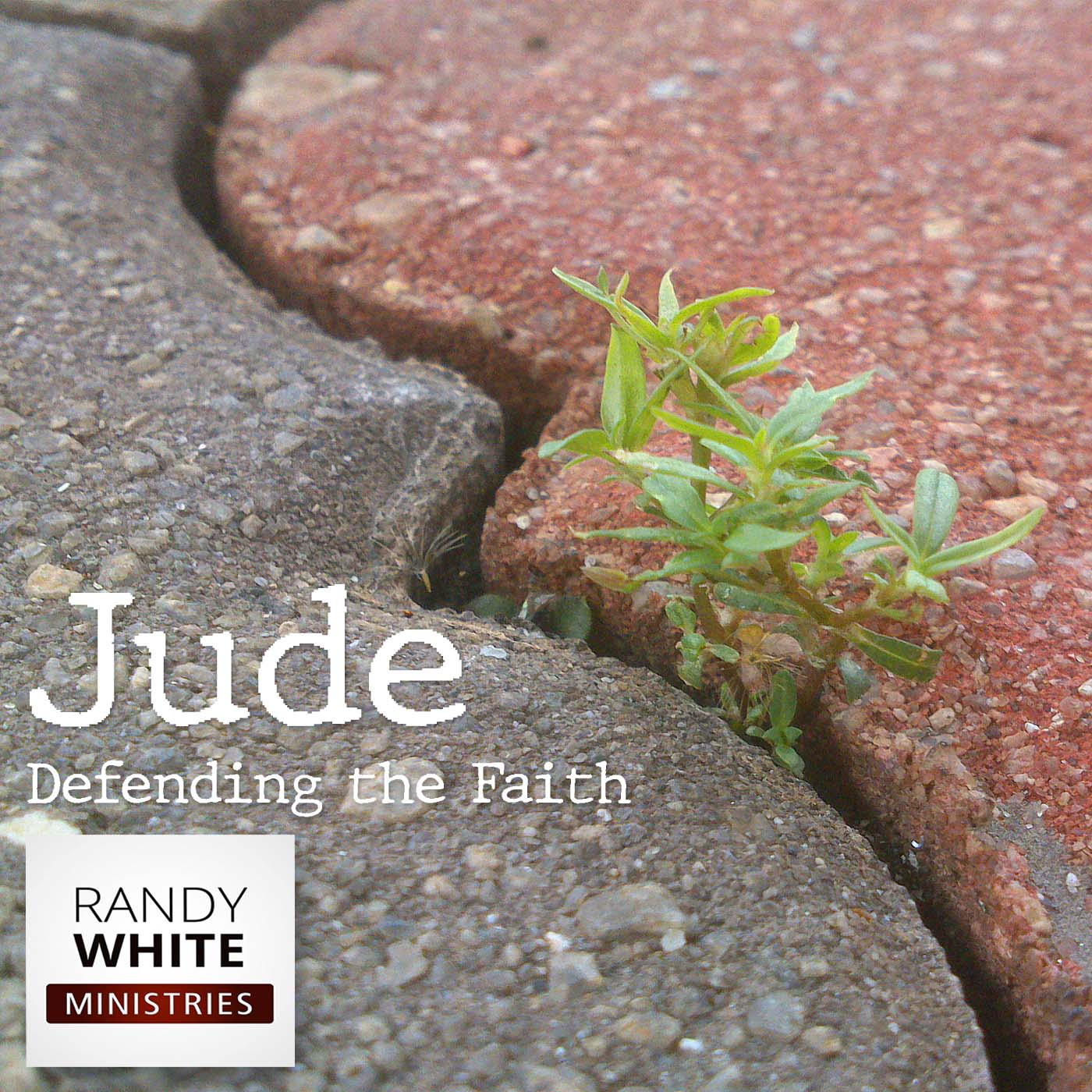 RWM: The Book of Jude - Defending the Faith