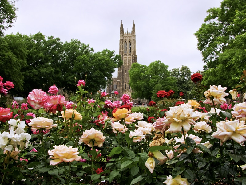 Duke Chapel and Gardens Durham NC