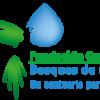 Fundación Guanacas Bosques de Niebla