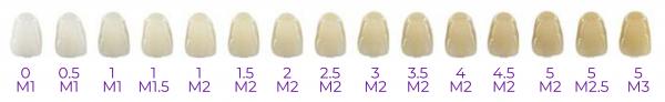bleaching-shades-chart