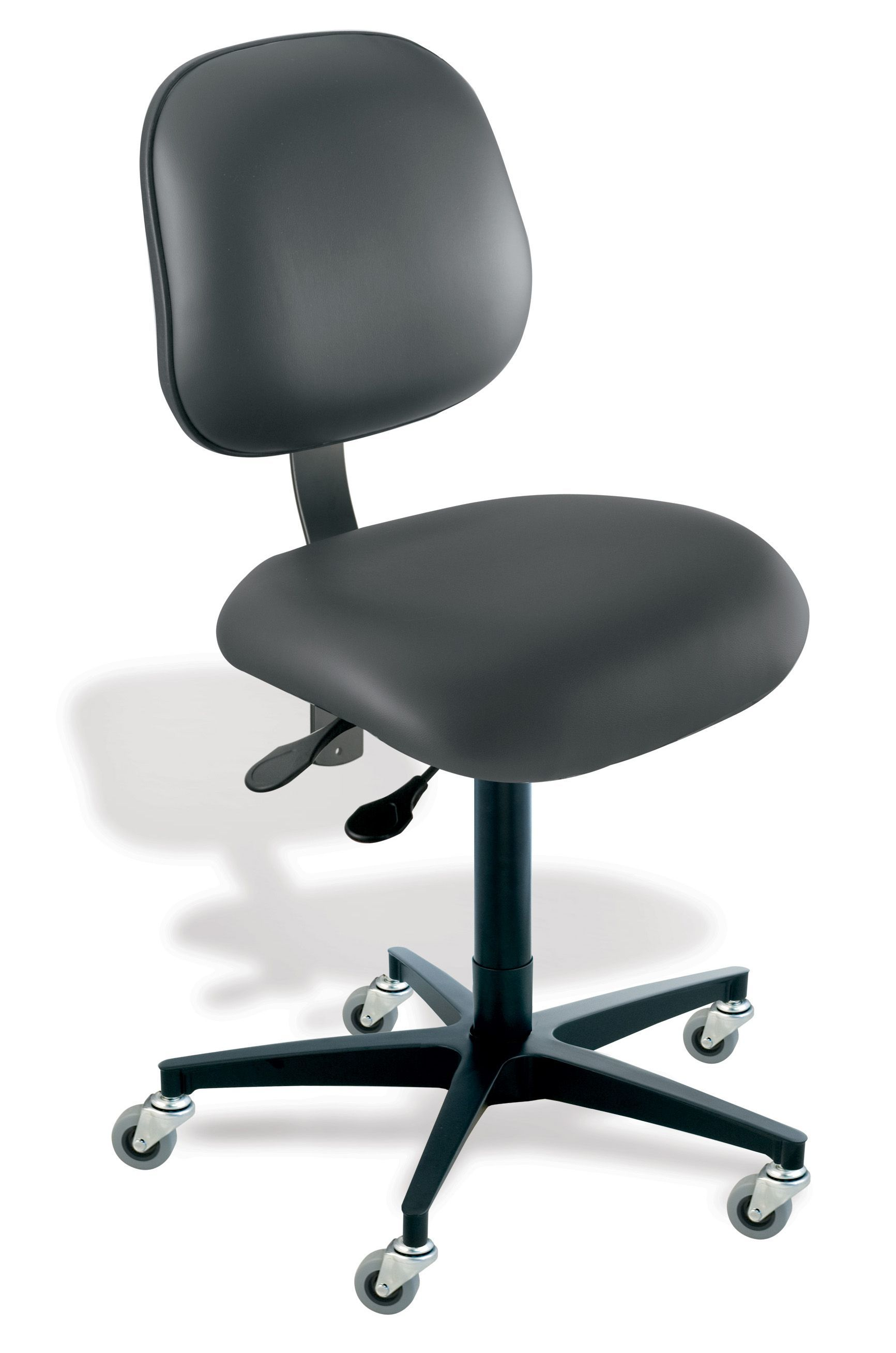 Task Chairs in DC, VA & MD, Elite EE Series Task Chair by BioFit
