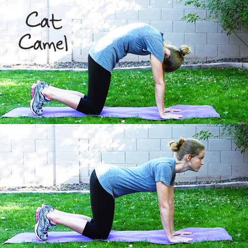 Inspired RD Exercise Library: Cat/Camel