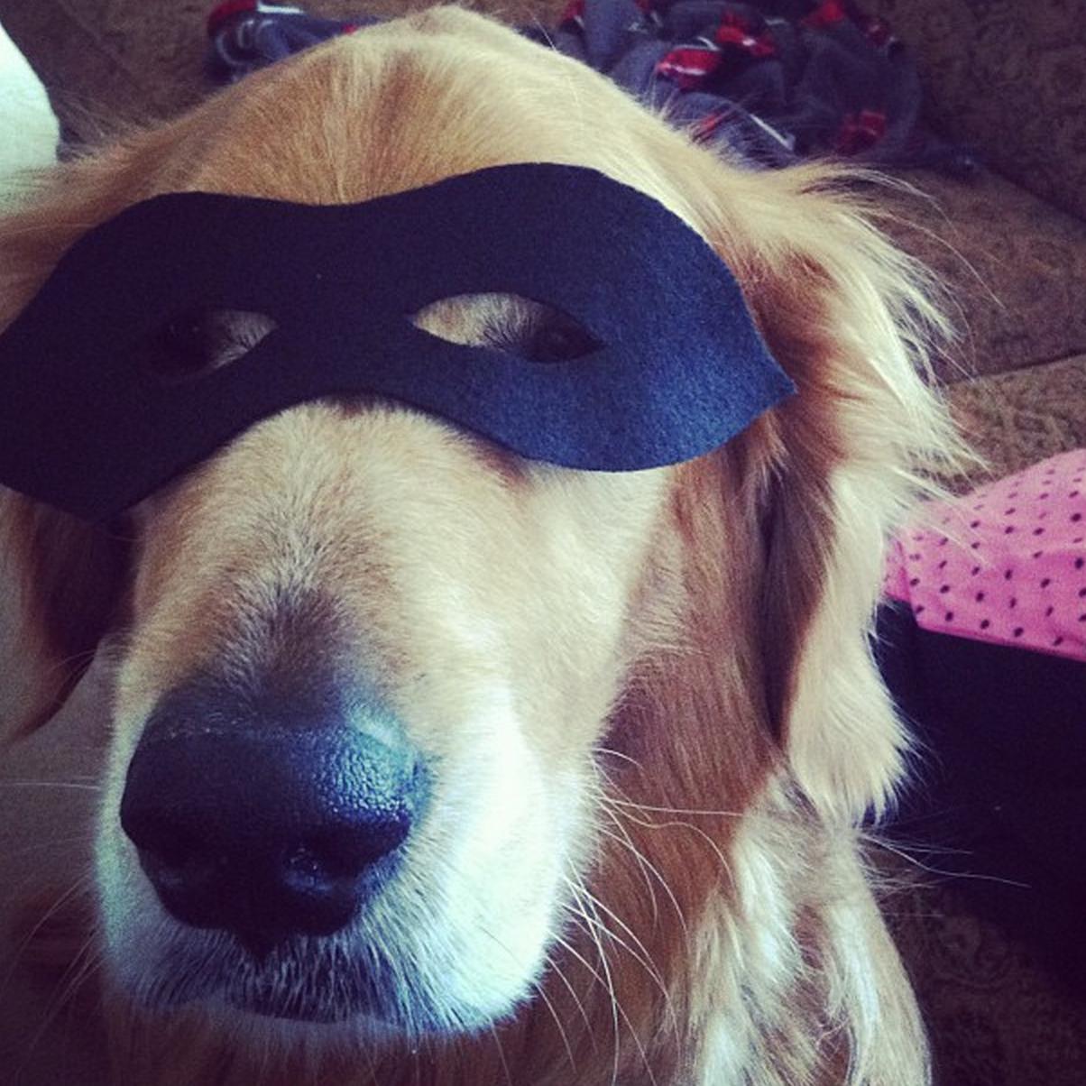 superhero mask inspiredrd.com