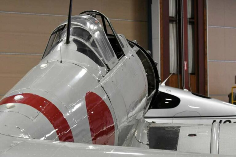 Grey and Red Warbird