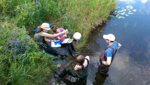 Water Quality Teams