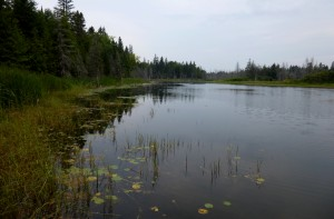 Pond on the Lind Easement