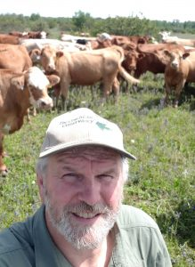 Dave Hawke in Carden with the cattle
