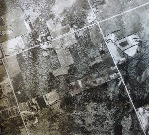 Old Aerial View Grant's Woods