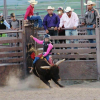 Young person riding a bull