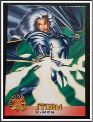 Storm Fleer 1996
