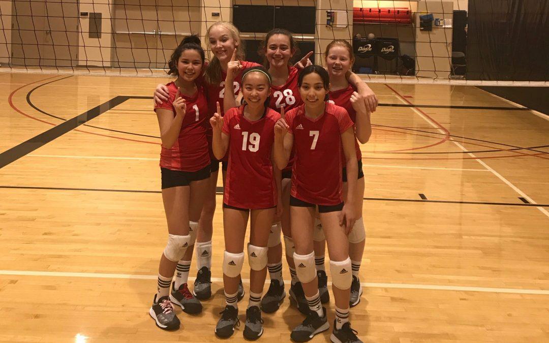 14u Friendship Tournament