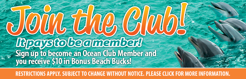 New Member Bonus Beach Bucks
