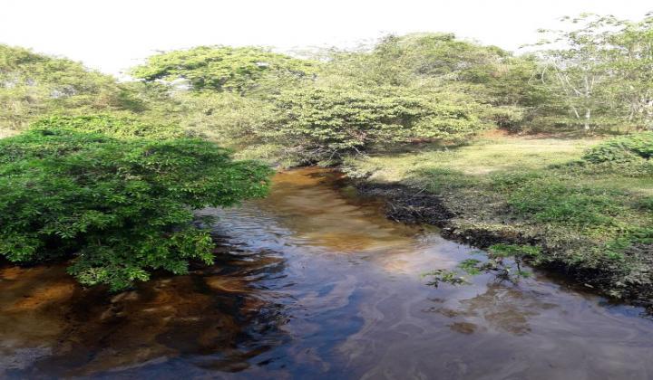 Contraloría General ya había advertido a Ecopetrol de tragedia en Lizama