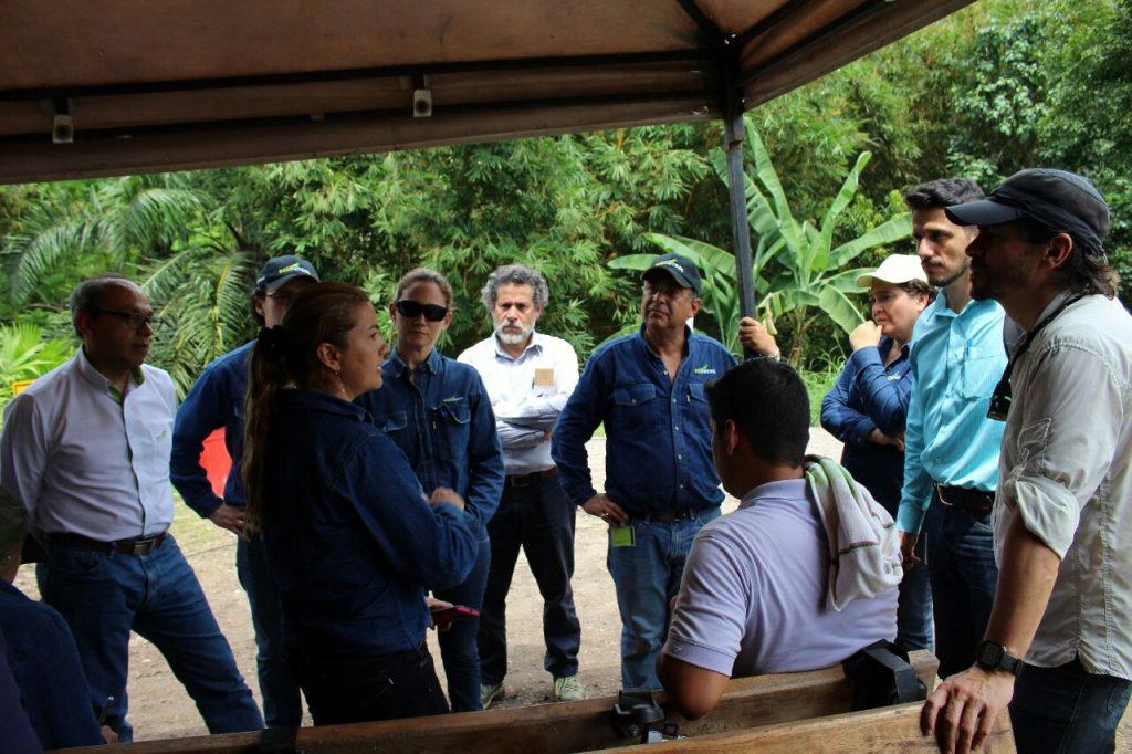 Ecopetrol y el Instituto Von Humboldt se unen para restaurar daños en La Fortuna