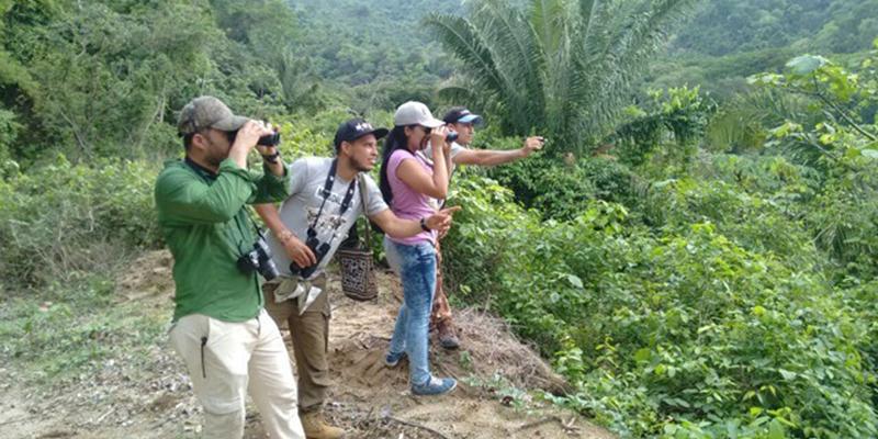 Observación para el estudio de aves se llevará a cabo en Barrancabermeja