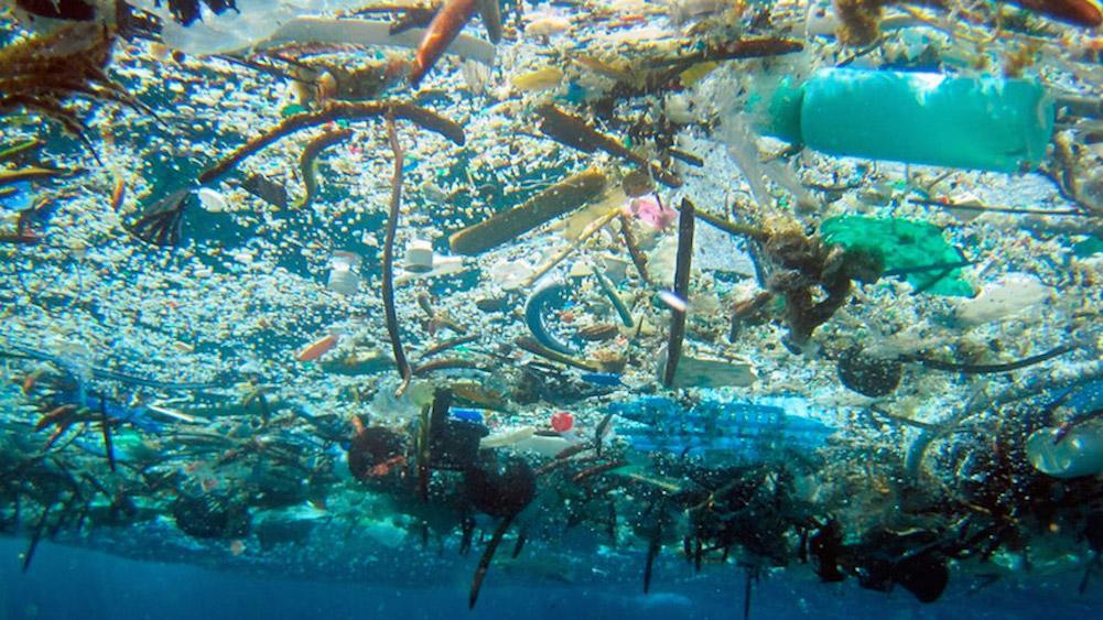 Mar Caribe de Colombia y Panamá plagado de micro plásticos, según expertos