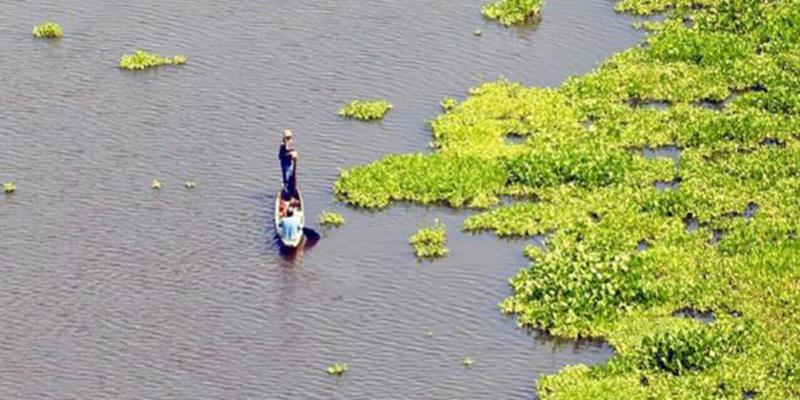 MinAmbiente, Ecopetrol y la CAS se comprometen a limpiar la ciénaga San Silvestre