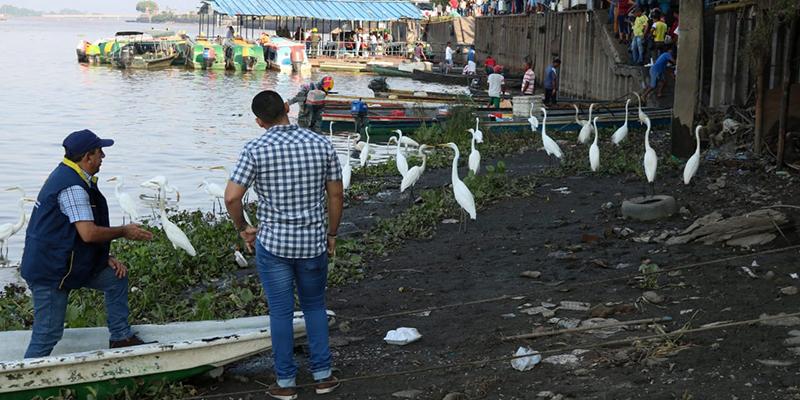 """Alcaldía inicia jornadas de prevención del riesgo en el sector """"El Muelle"""""""