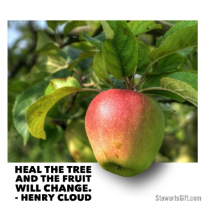 "Tree hanging from tree with text ""HEAL THE TREE AND THE FRUIT WILL CHANGE. -HENRY CLOUD"""