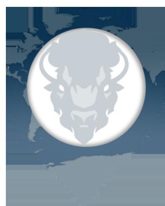 Bison-Abroad-Logo