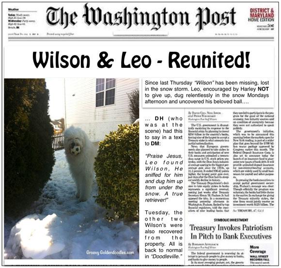 Leo-and-Wilson