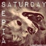 sepia_saturday_blog_hop_badge_200-150x150