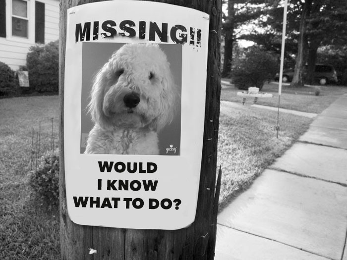 MissingPoster