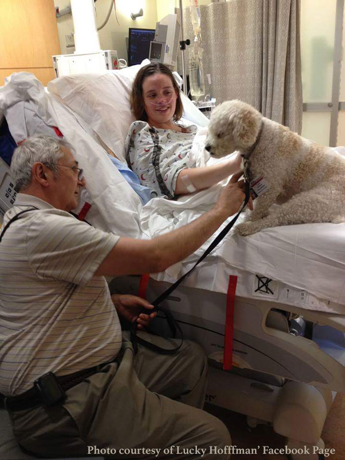 Life as a Therapy Dog