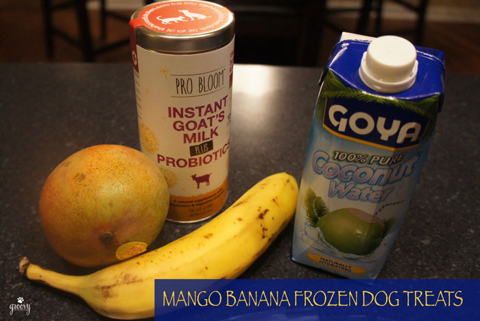FREEZE POPS FOR PUPS - THE HONEST KITCHEN