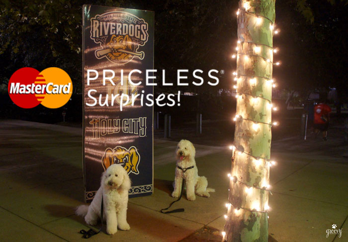 CHARLESTON RIVERDOGS - DOG DAYS