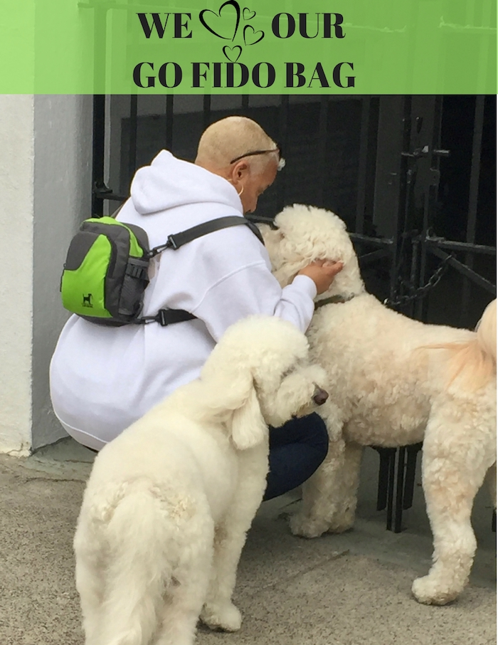 LET'S GO FIDO BAG
