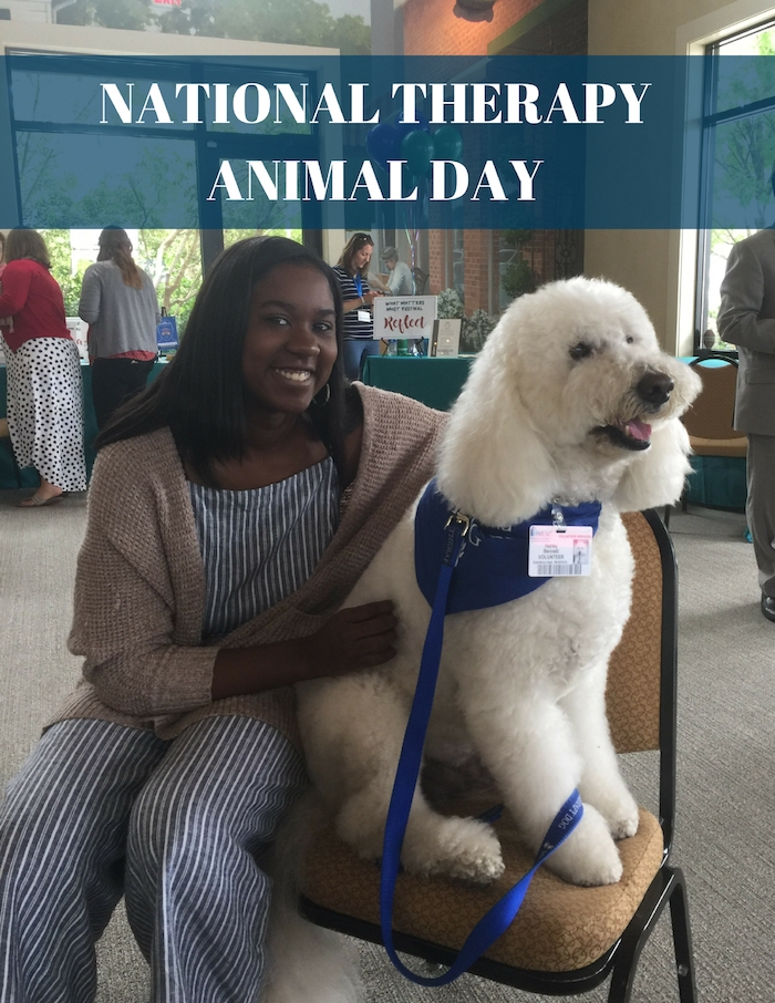 NATIONAL THERAPY ANIMAL DAY
