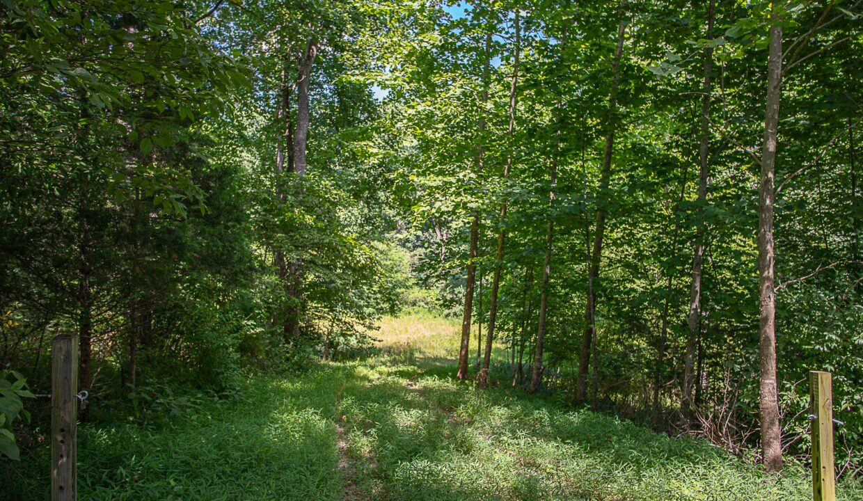 Land for Sale in Madison_01