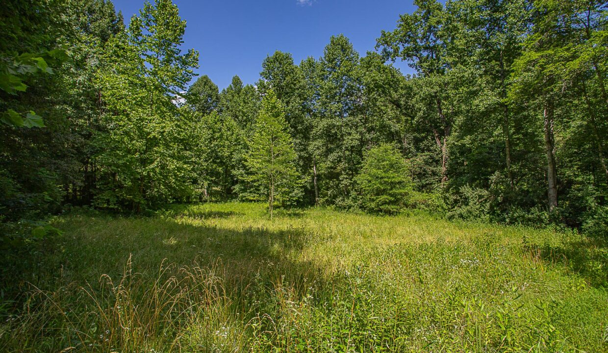 Land for Sale in Madison_03