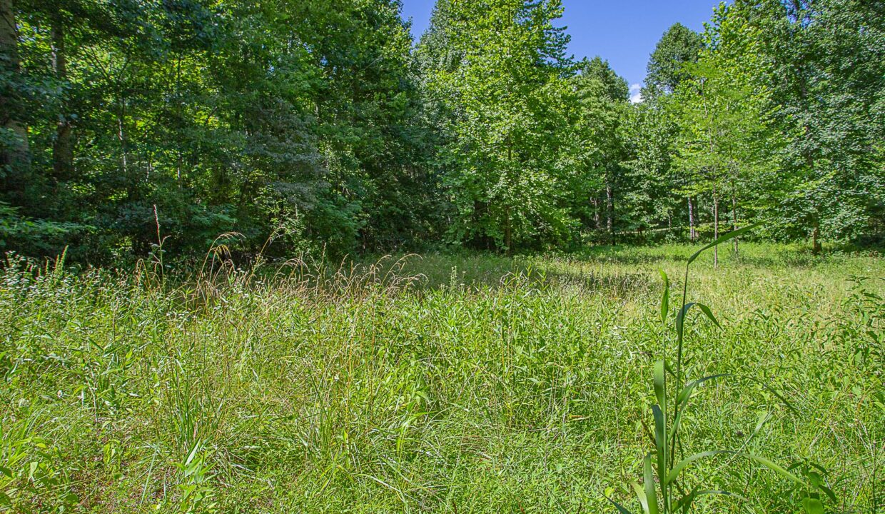 Land for Sale in Madison_04