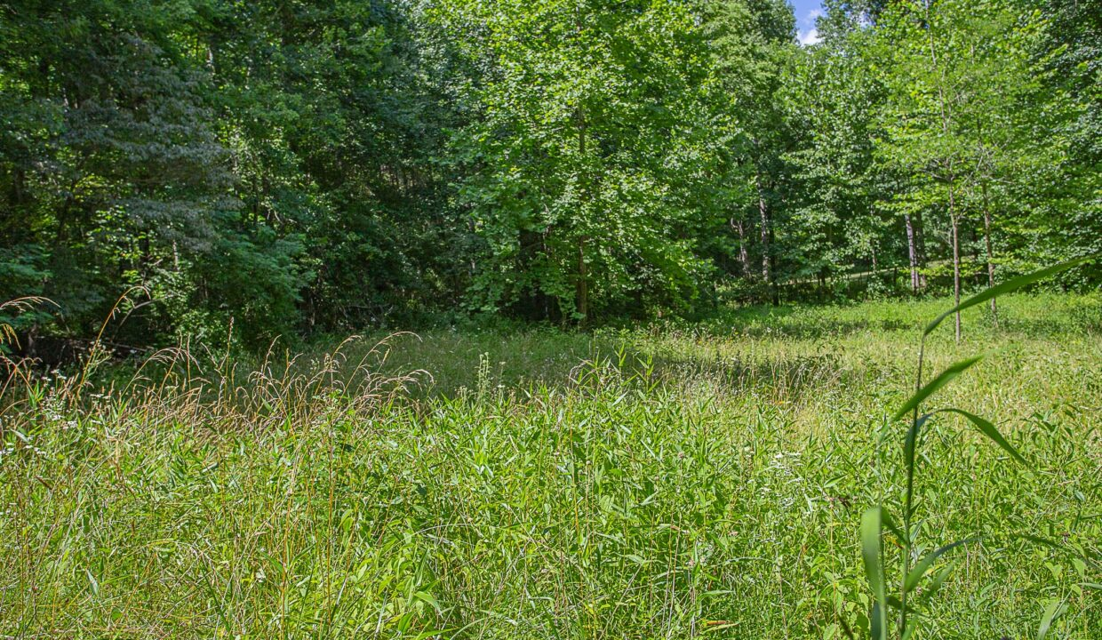Land for Sale in Madison_05