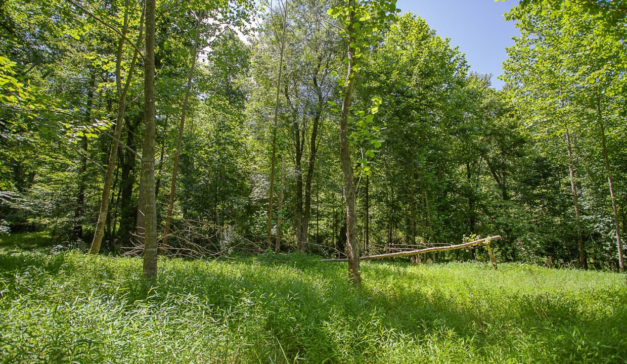 Land for Sale in Madison_12