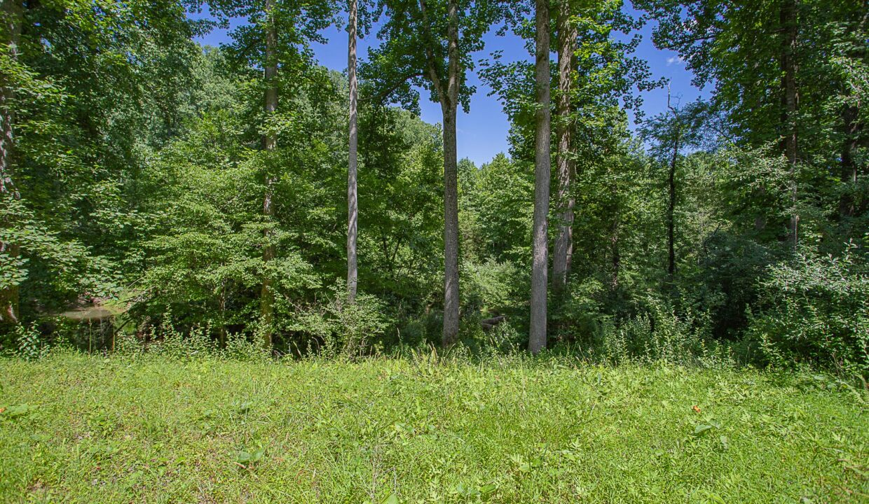 Land for Sale in Madison_16