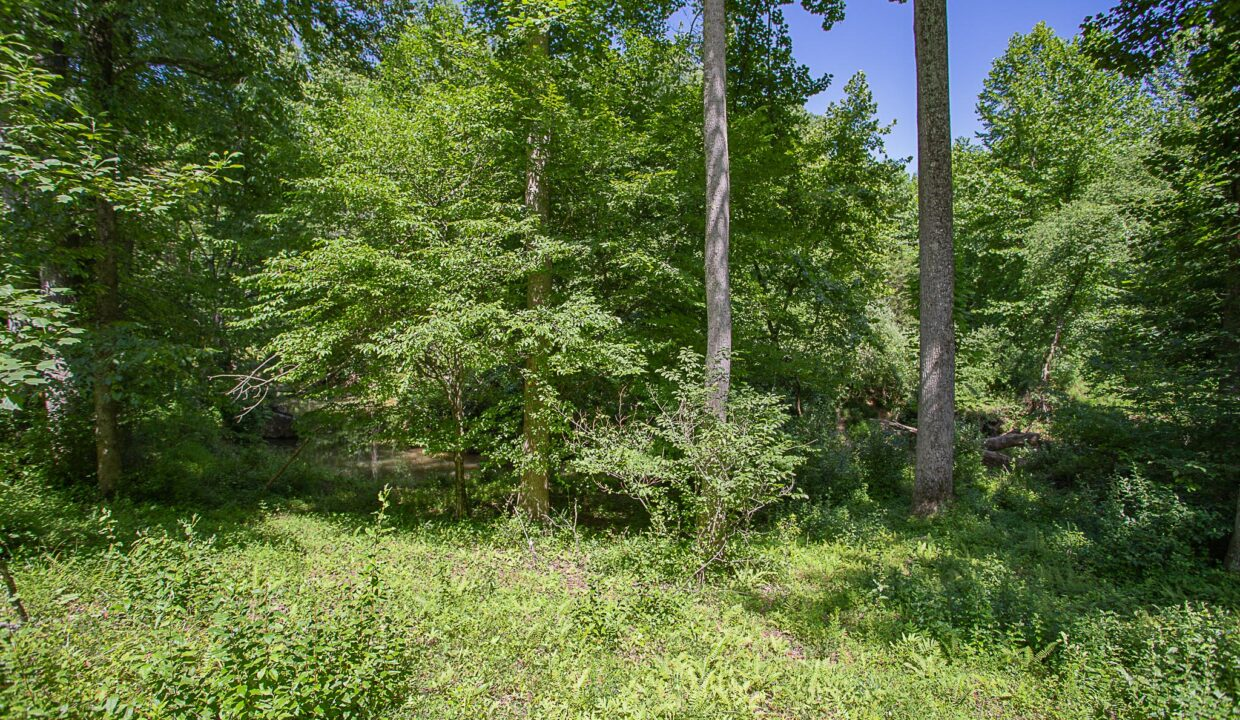 Land for Sale in Madison_18