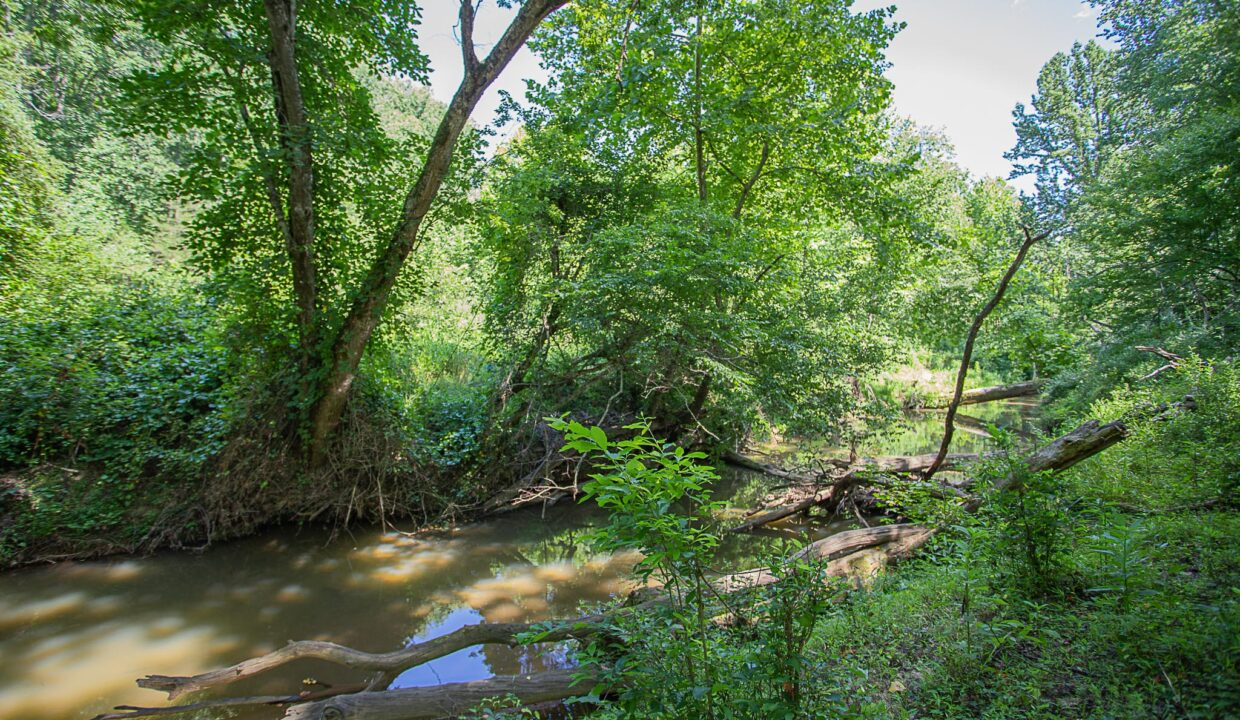 Land for Sale in Madison_22