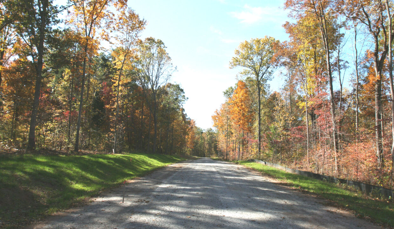 Fall Photos 028