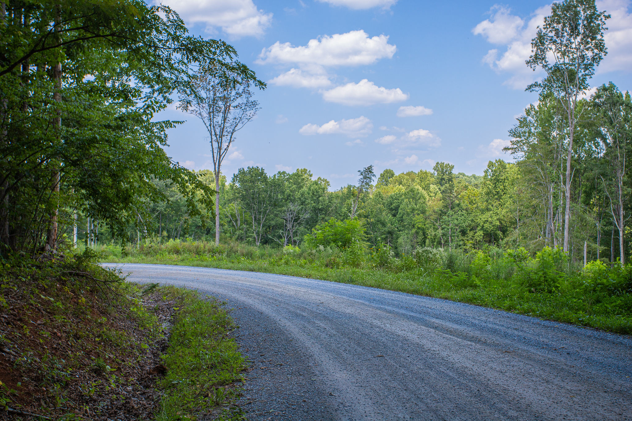 One Acre Lot in Bedford County on Ephesus Road