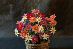 Basket full of Mignon Singles & 1 micro which was s the biggest bloom !!!!